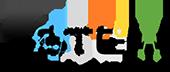 STEM Detective Logo